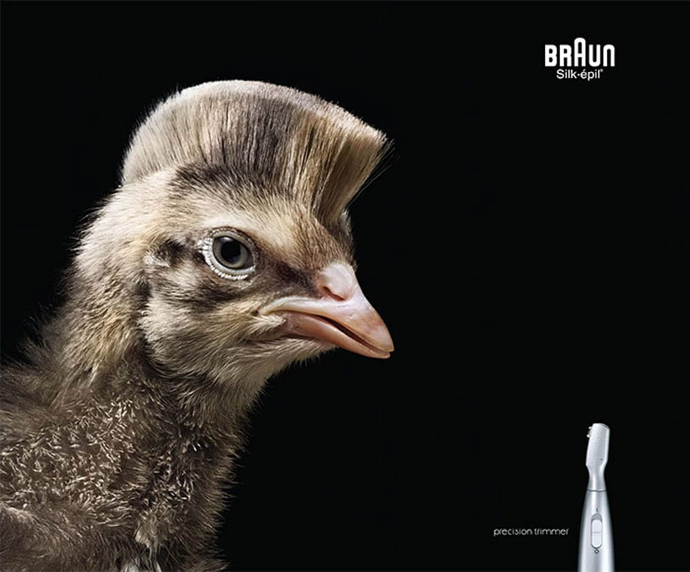 funny-ads-with-animals-731