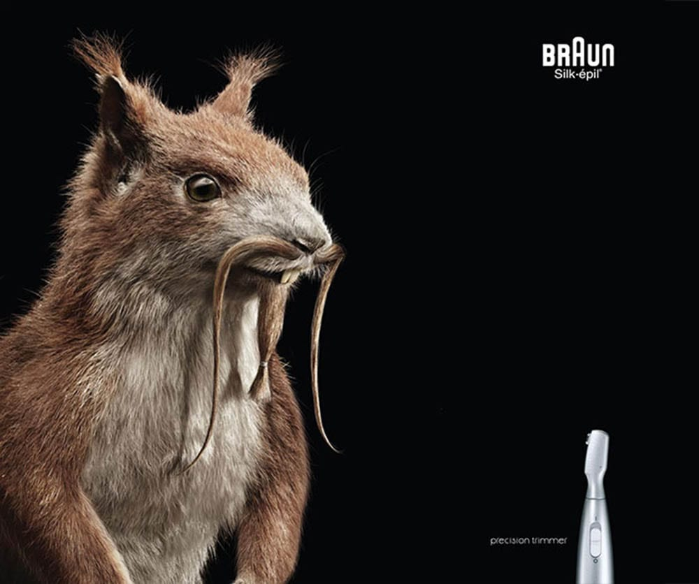 funny-ads-with-animals-761