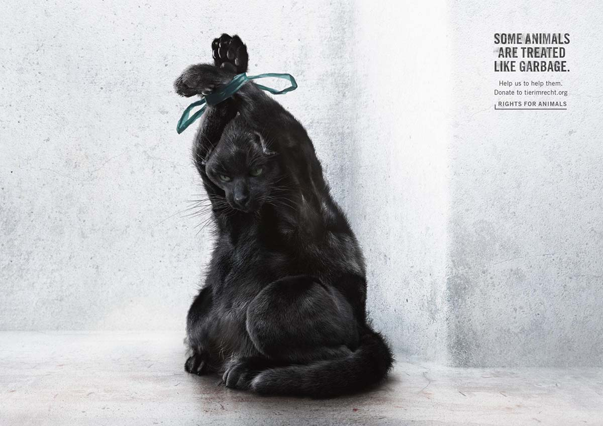tir-animals-like-garbage-02_aotw
